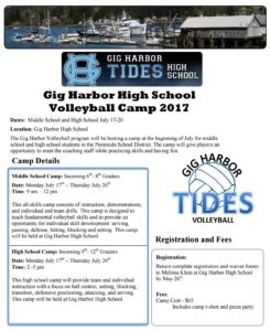PDF Form Preview of volleyball camp